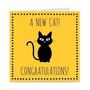 kaartje voor de nieuwe kat: a new cat!