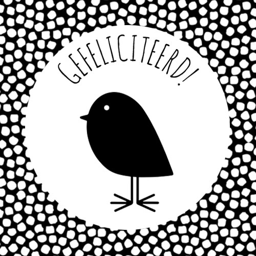 sticker   gefeliciteerd   vogeltje