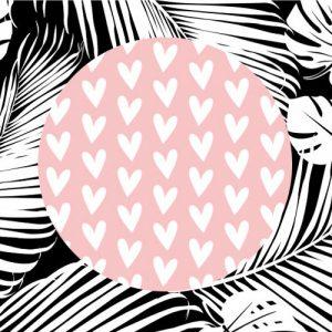 sticker | hartjes | roze-wit